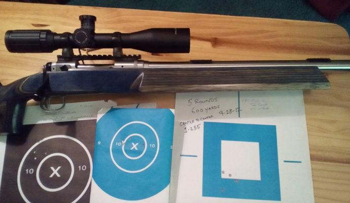 gun and targets