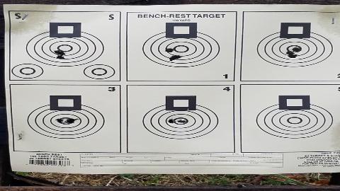 Damien L Target 2