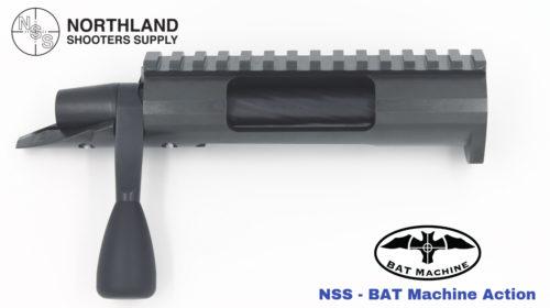 NSS-BAT ACTION