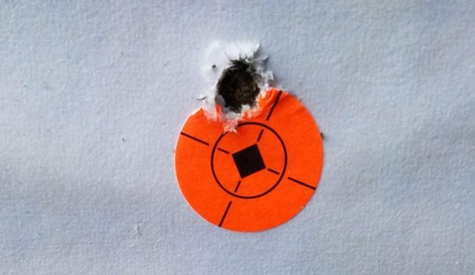 Grant B 100 yard target